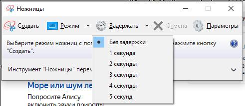 Установка задержки перед снимком экрана